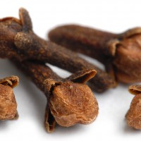 Cloves-Spices-Suppliers-In-Chennai